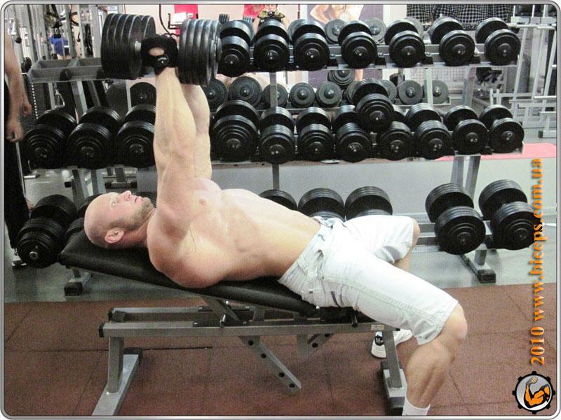 Грудные мышцы: Разведения рук лежа на наклонной скамье