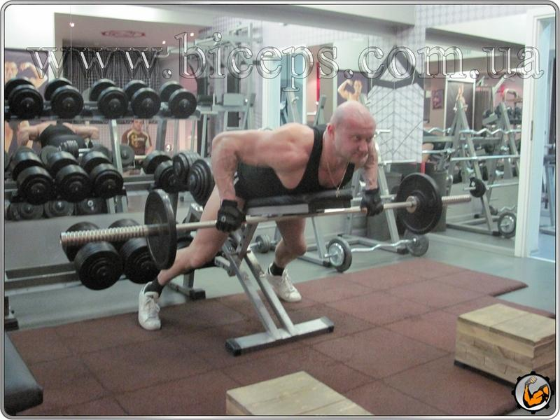 Тяга штанги лежа на животе на скамье для развития мышц середины спины, трапециевидных мышц