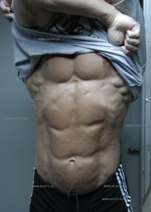 Совет дня: «Вам стыдно снимать футболку и смотреть в зеркало?  Стоит, наконец, выдержать полней цикл диеты и тренировок,  и данный  процесс неожиданно станет приятным!»