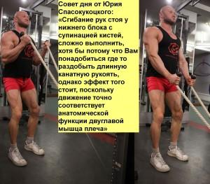 Совет дня от Вашего тренера — 22.08.2012