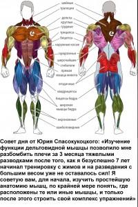 Совет дня от Вашего тренера — 31.08.2012